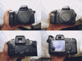 The 5DMKII VS EOS ELAN 7